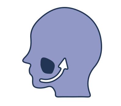 sinus lift icon